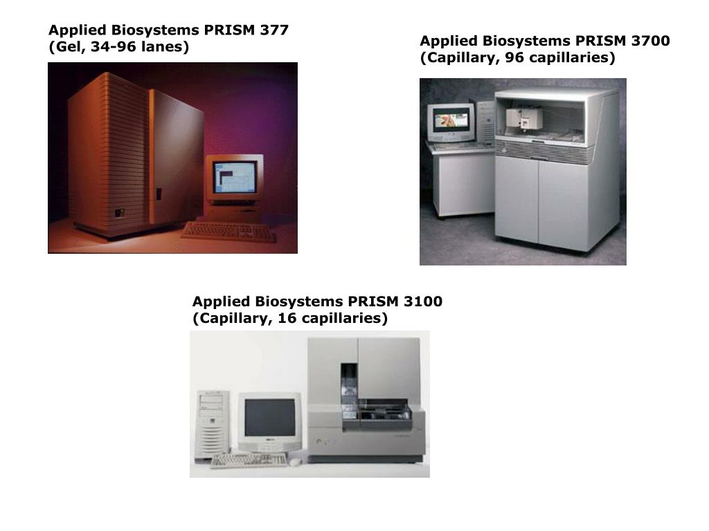 Applied Biosystems PRISM 377