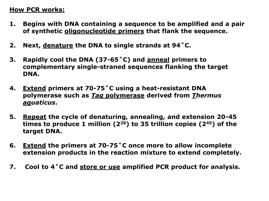 How PCR works:
