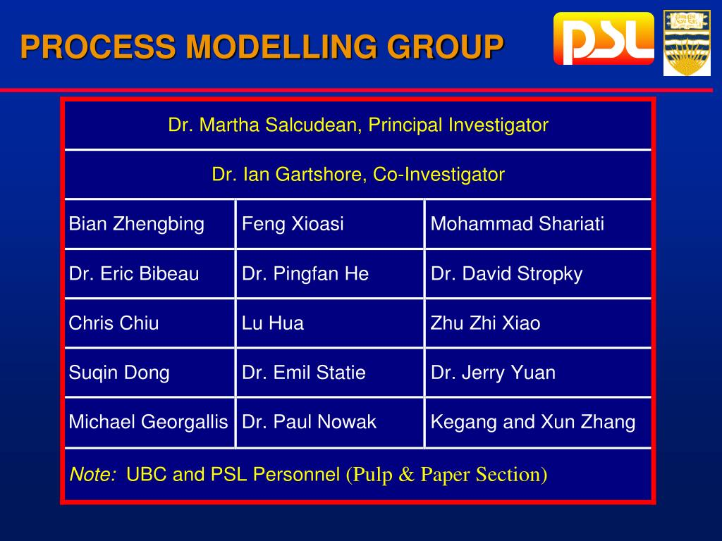 PROCESS MODELLING GROUP