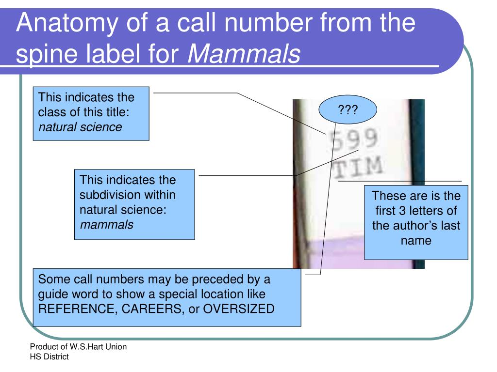 Anatomy of a call number from the spine label for