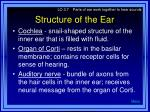 structure of the ear32