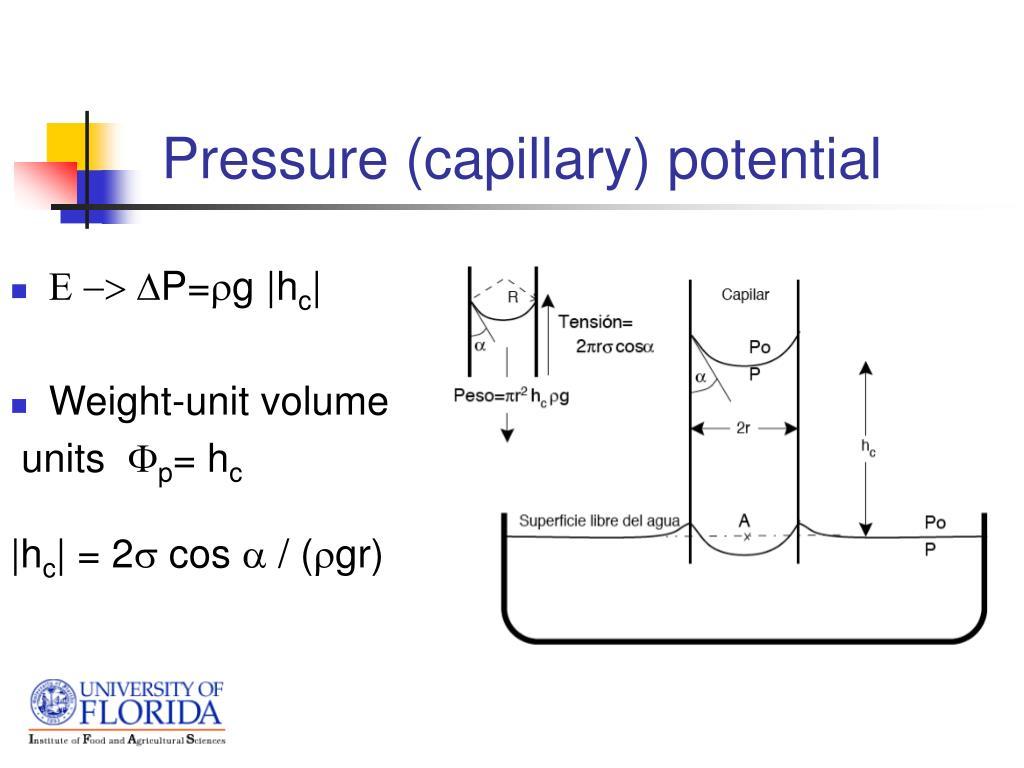 Pressure (capillary) potential
