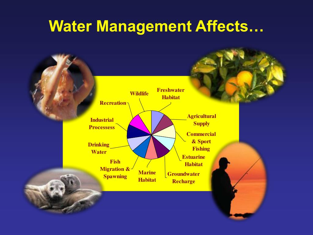 Water Management Affects…