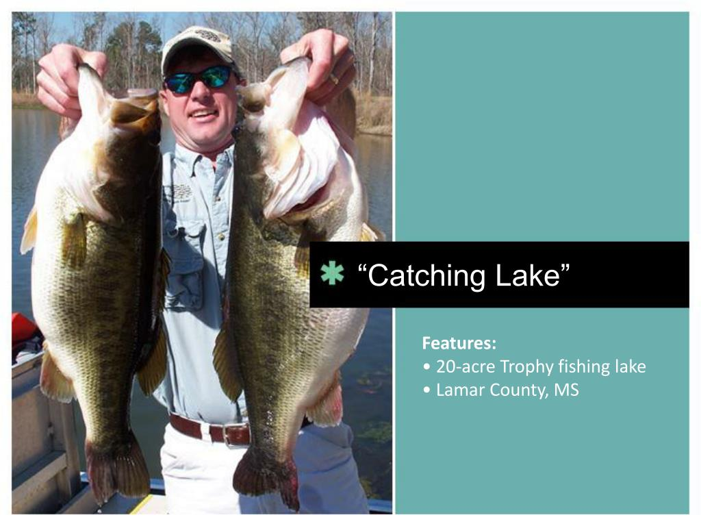 """Catching Lake"""