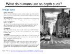 what do humans use as depth cues7