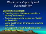 workforce capacity and sustainability35