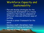 workforce capacity and sustainability52