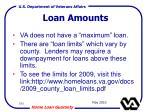 loan amounts