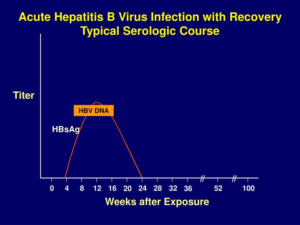 hepatitis b ggd