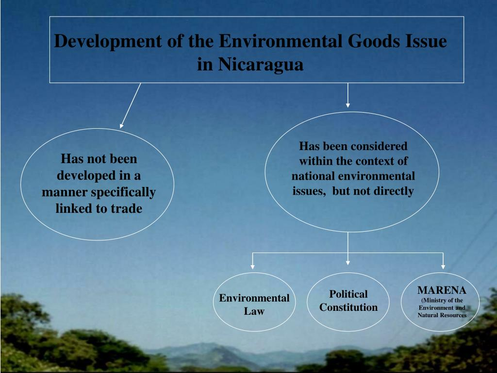 Has been considered within the context of national environmental issues,  but not directly