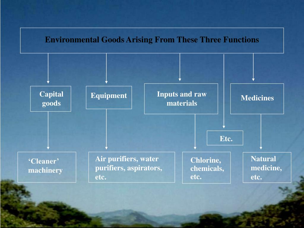 Environmental Goods Arising From These Three Functions