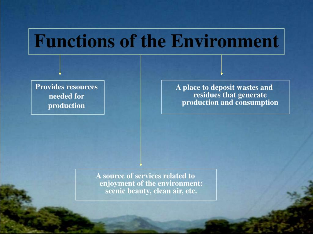Functions of the Environment