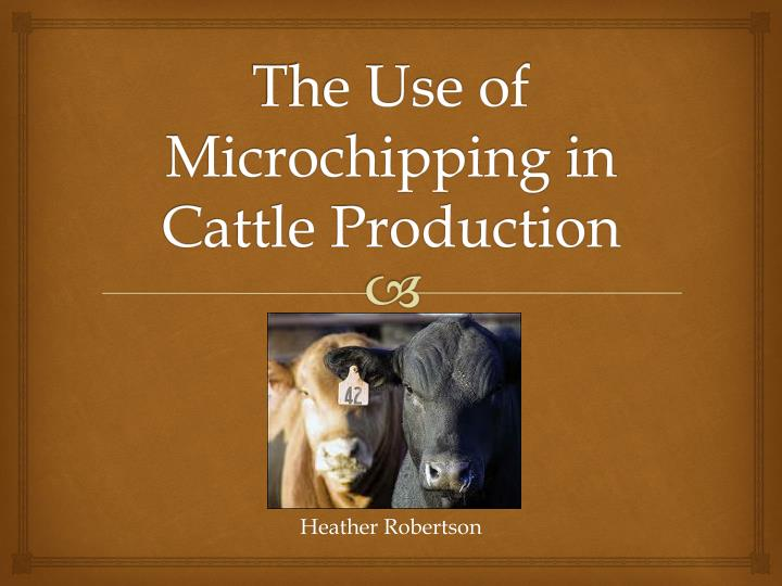 The use of microchipping in cattle production l.jpg