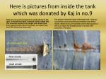 here is pictures from inside the tank which was donated by kaj in no 9