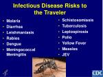 infectious disease risks to the traveler