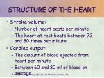 structure of the heart12