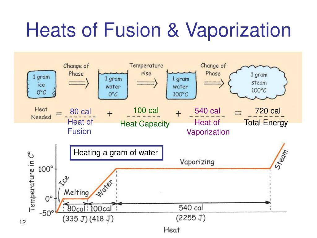 Heats of Fusion & Vaporization