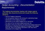 hedge accounting documentation requirements