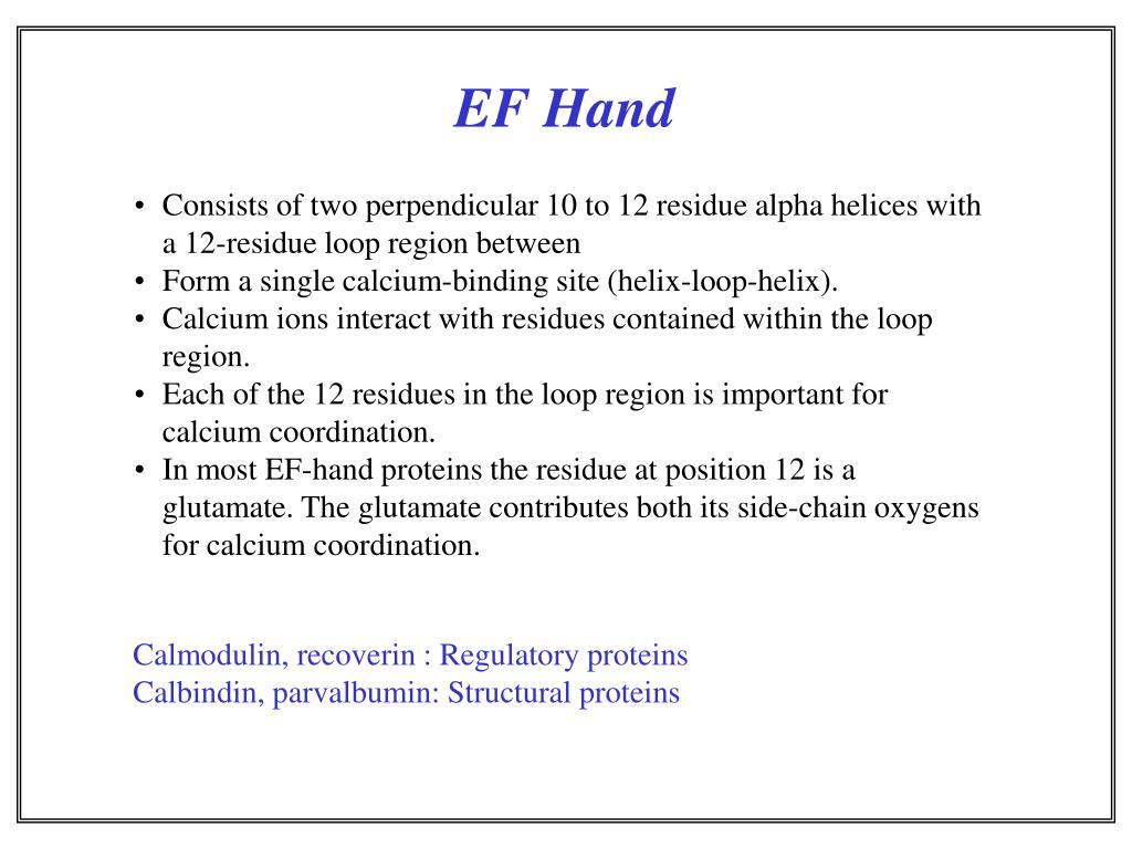 EF Hand