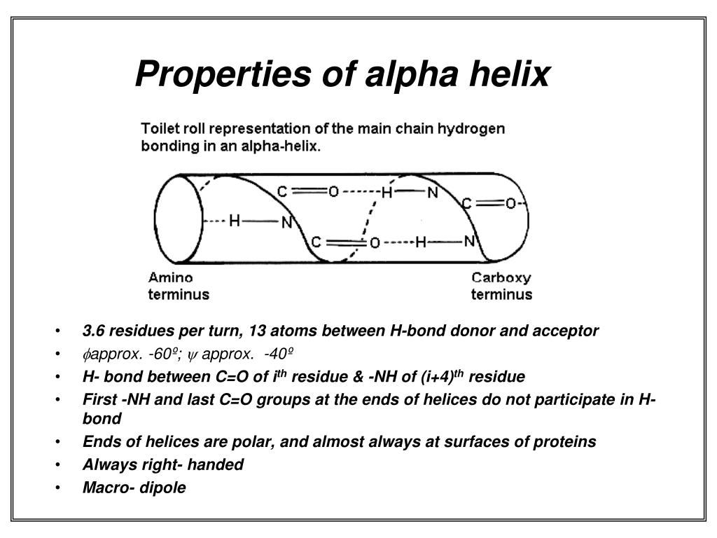 Properties of alpha helix