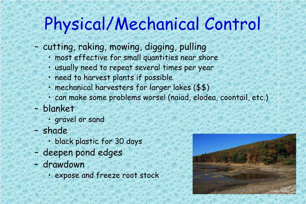 Physical/Mechanical Control