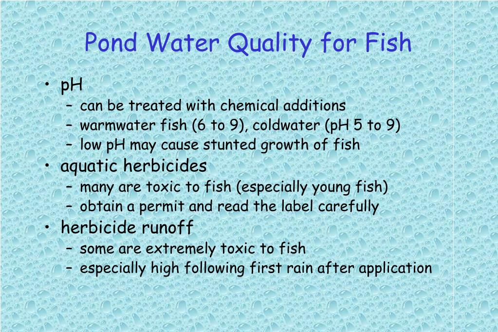 Pond Water Quality for Fish