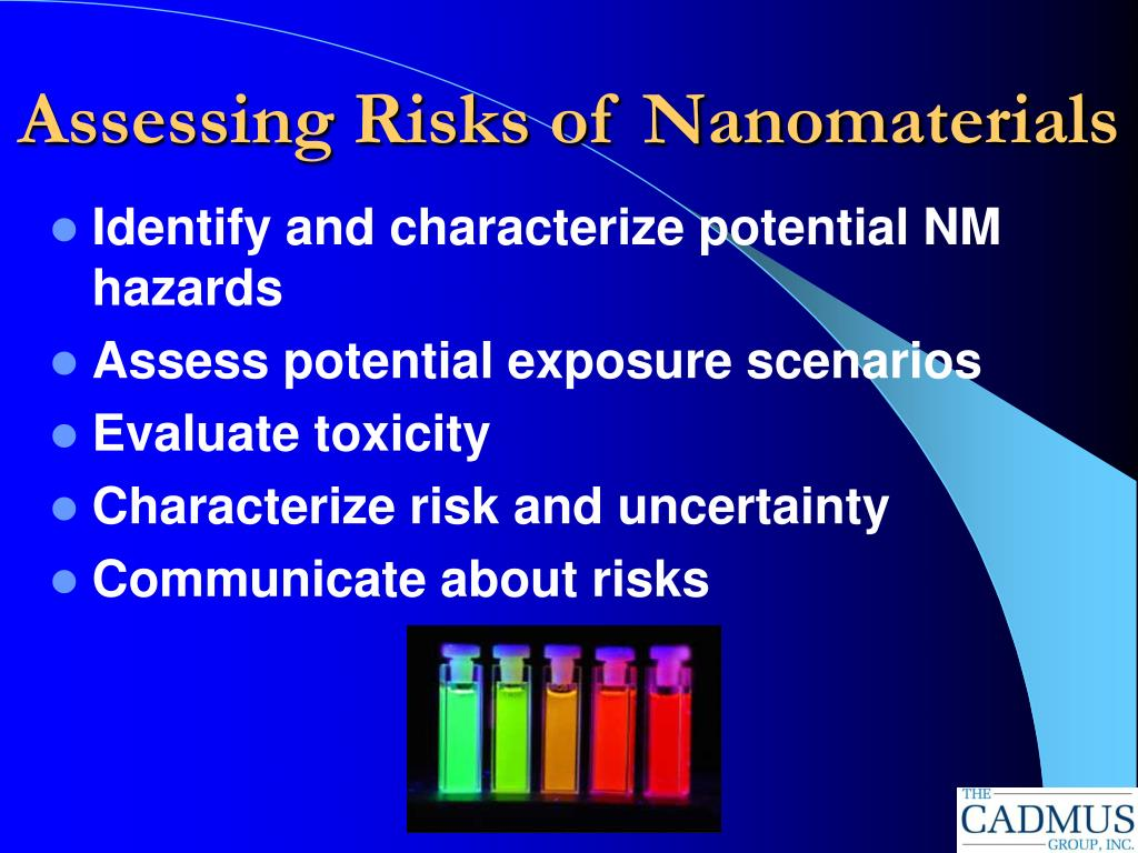 Assessing Risks of Nanomaterials