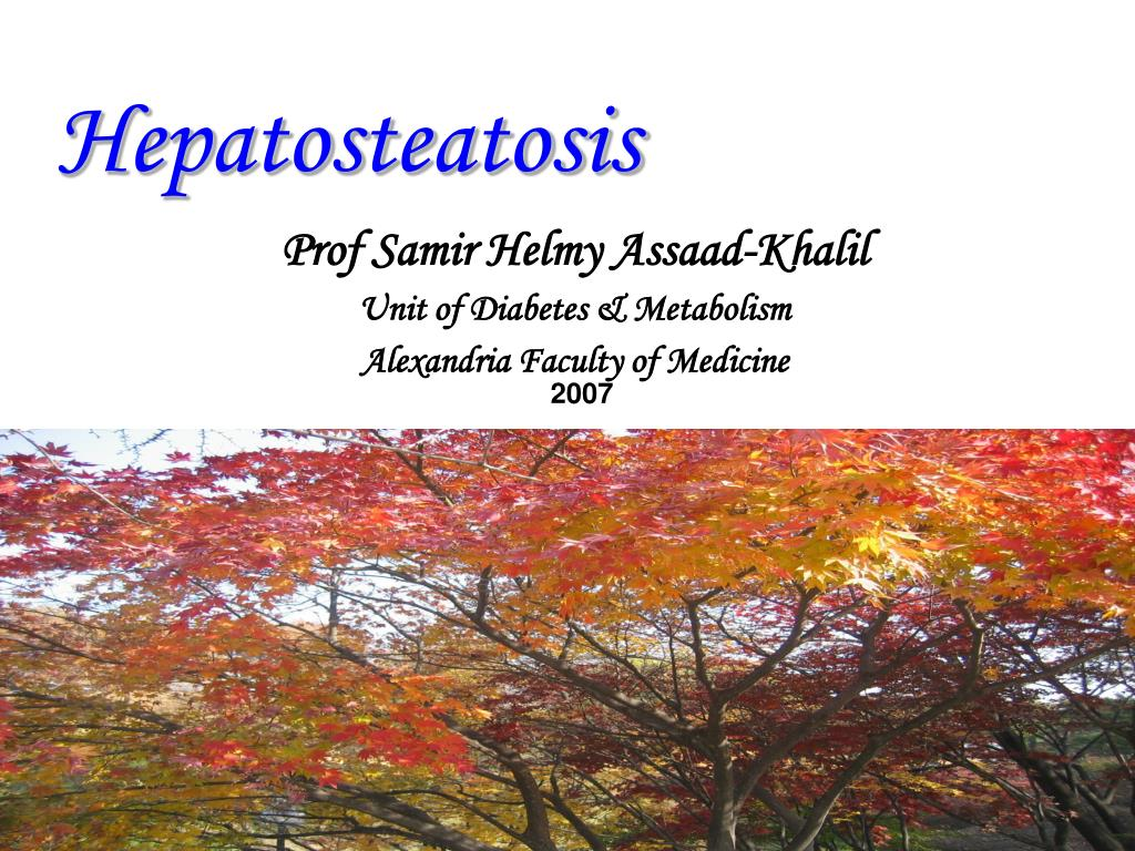 hepatosteatosis
