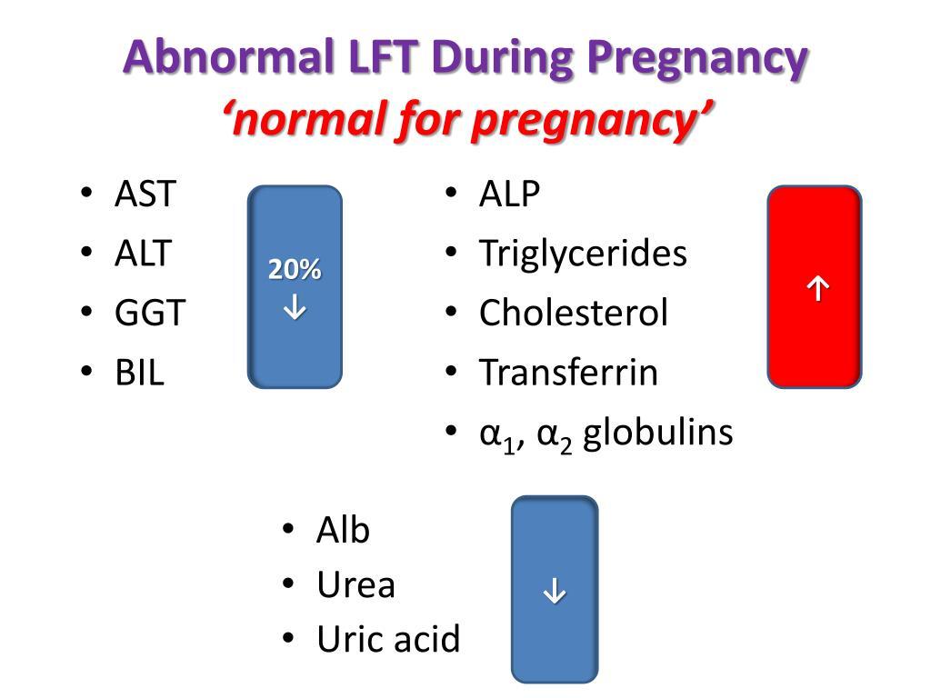 Abnormal LFT During Pregnancy