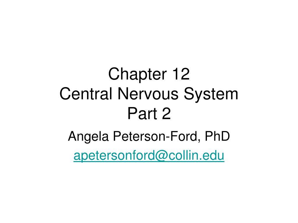 chapter 12 central nervous system part 2
