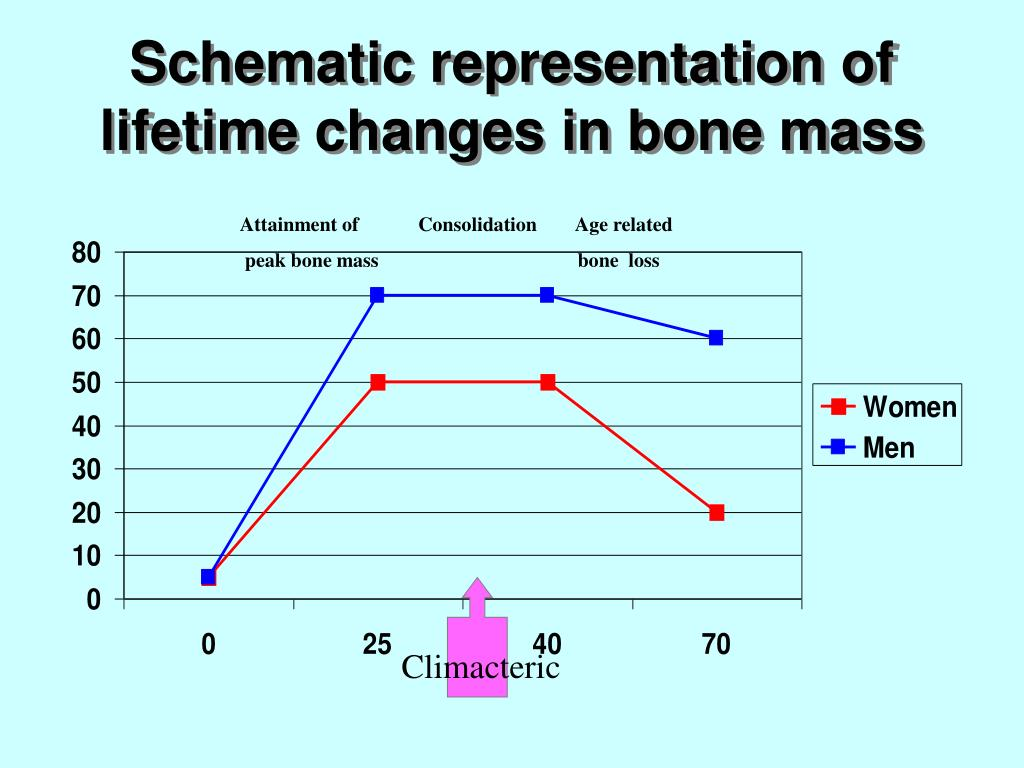 explain what peak bone mass is and its relationship to osteoporosis