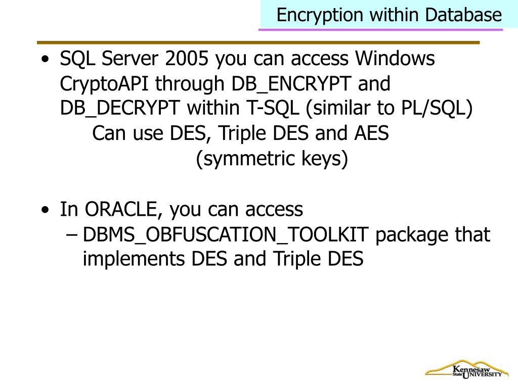 Encryption within Database
