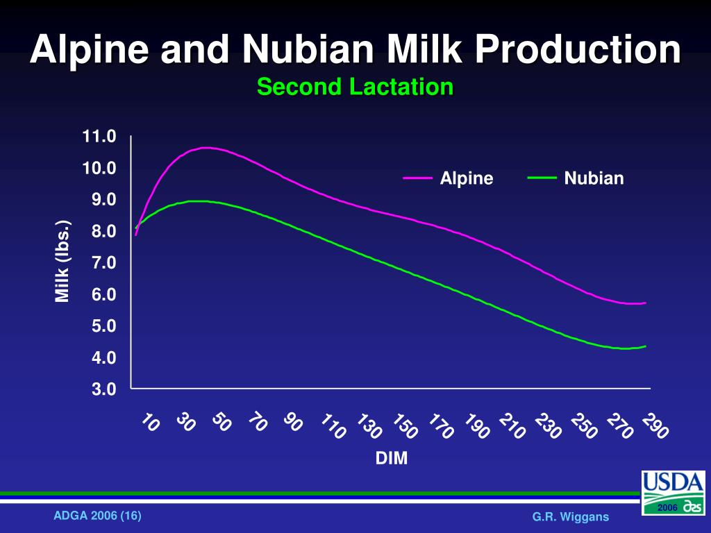 Alpine and Nubian Milk Production