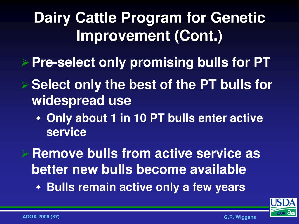 Dairy Cattle Program for Genetic Improvement (Cont.)