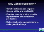 why genetic selection