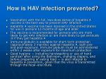how is hav infection prevented