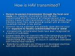 how is hav transmitted