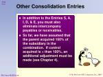 other consolidation entries