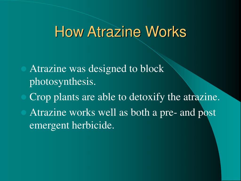 How Atrazine Works