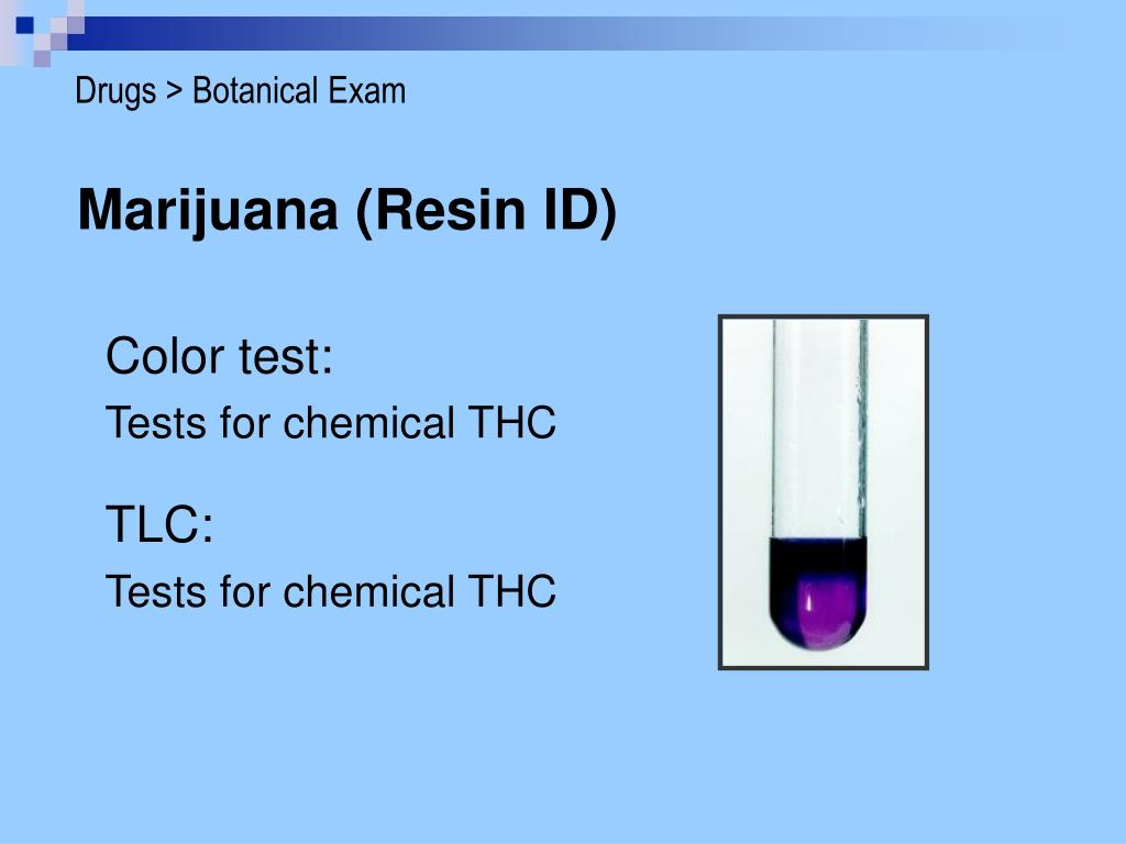 Drugs > Botanical Exam