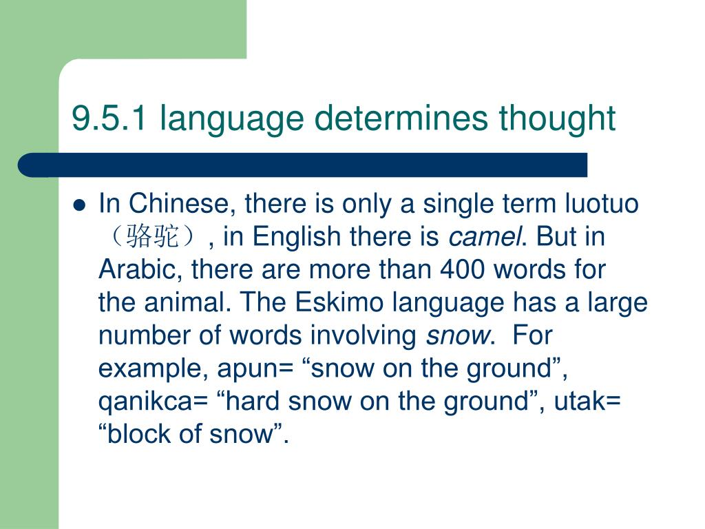 9.5.1 language determines thought
