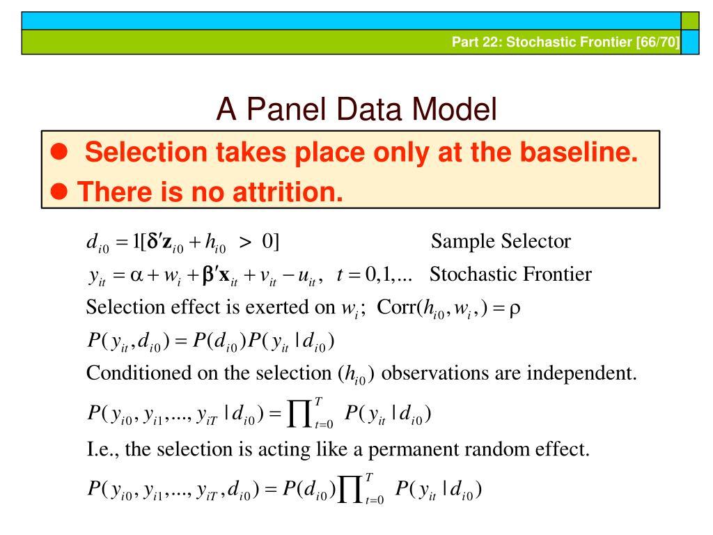A Panel Data Model