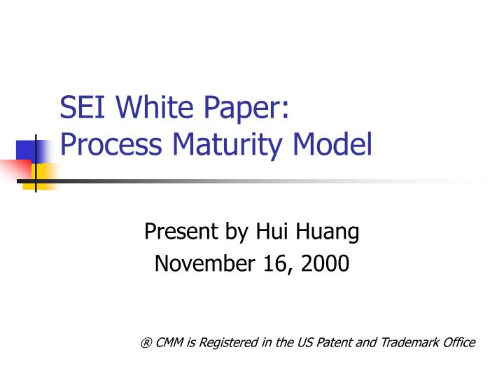 Sei white paper process maturity model l.jpg