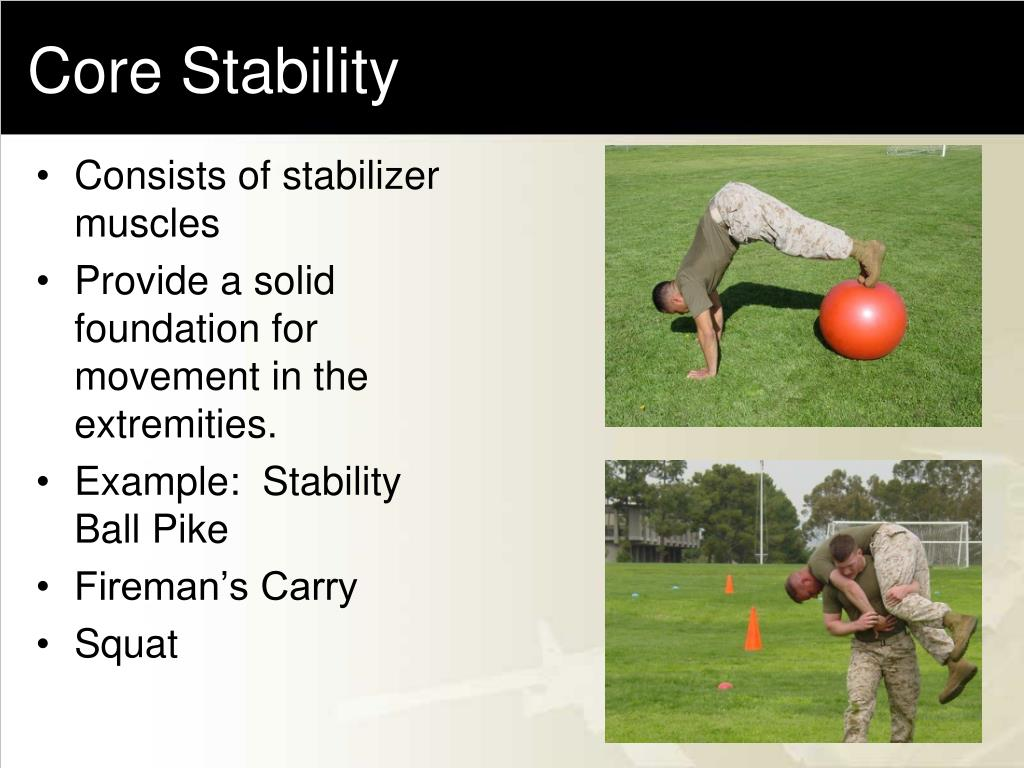 Consists of stabilizer muscles