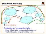 sub prefix hijacking