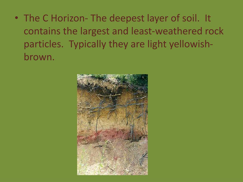Ppt weathering and soil formation powerpoint for What soil contains