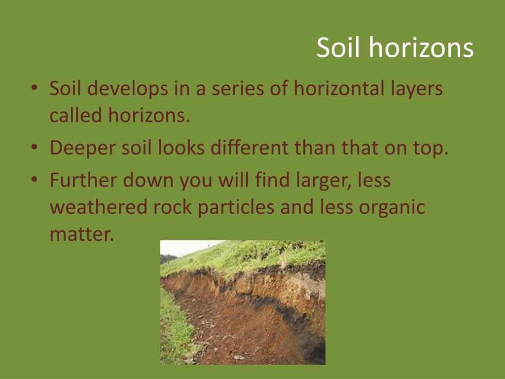 Ppt weathering and soil formation powerpoint for Soil horizons