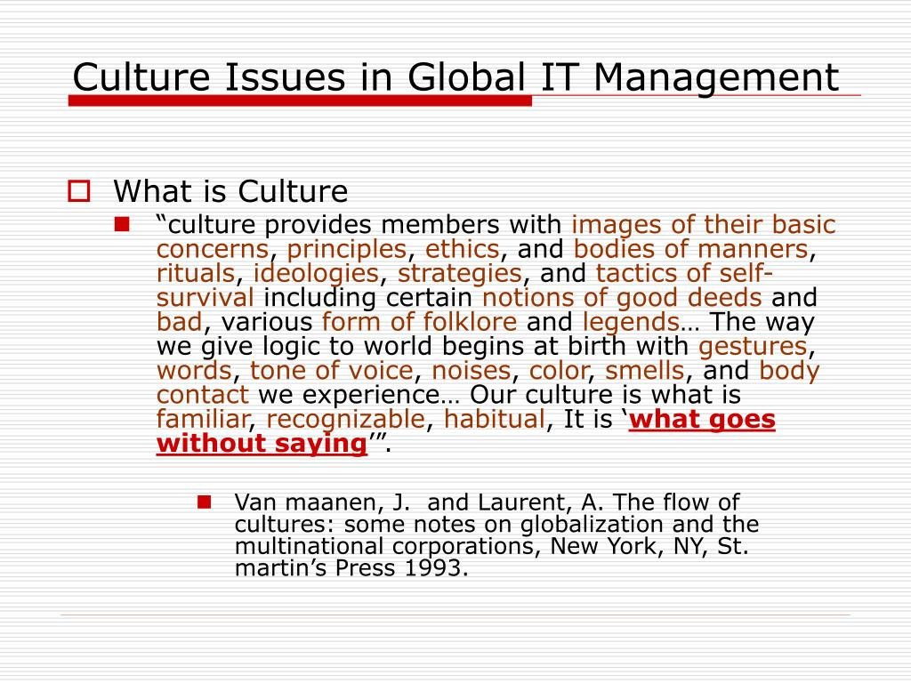 culture issues in global it management