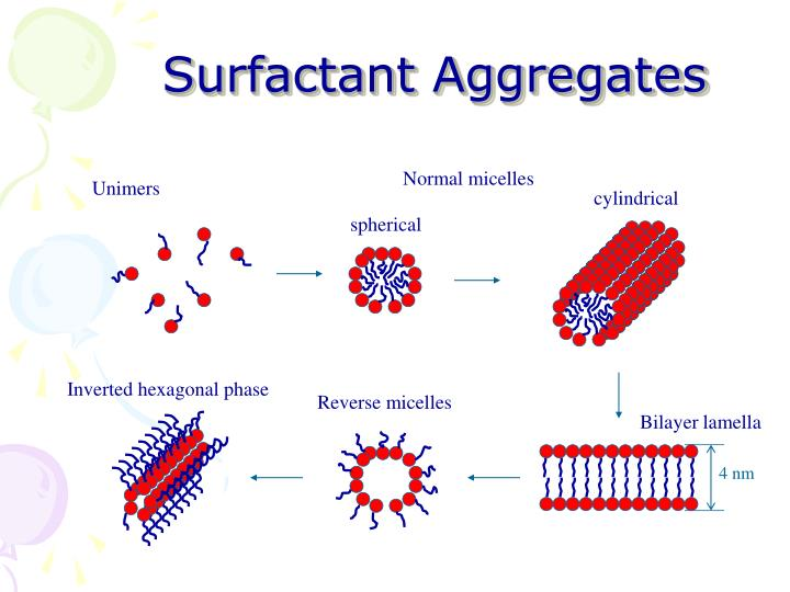 Surfactant aggregates l.jpg