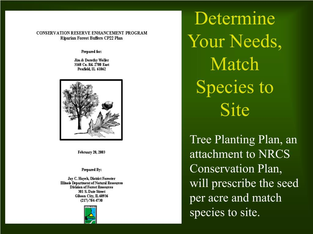Tree Planting Plan, an attachment to NRCS Conservation Plan, will prescribe the seed per acre and match species to site.